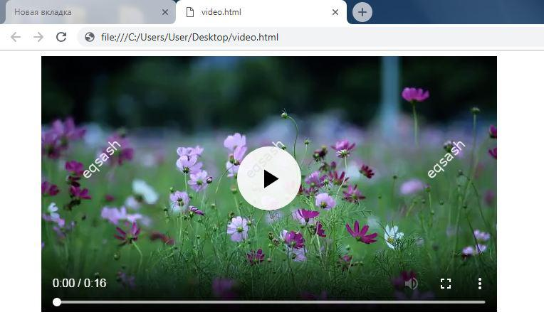 how-watch-video-without-player-using-browser